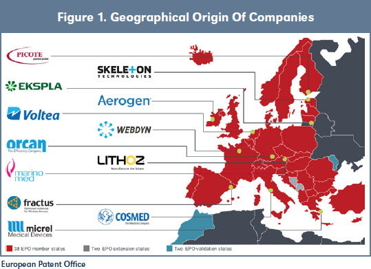 Figure 1. Geographical Origin Of Companies