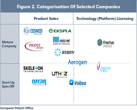 Figure 2. Categorisation Of Selected Companies
