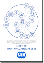 License Your Valuable Assets