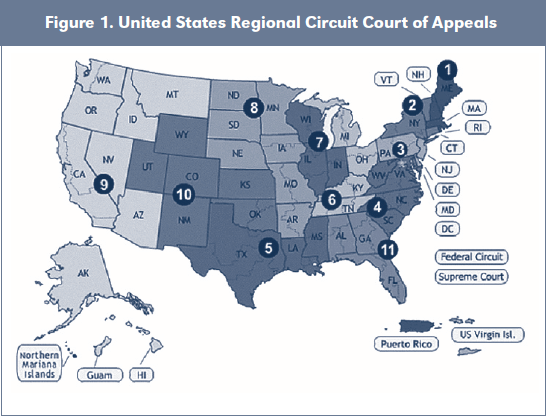 Figure 1. United States Regional Circuit Court of Appeals
